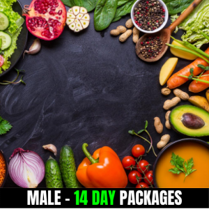 Vegan – Male (14 Day Plan)